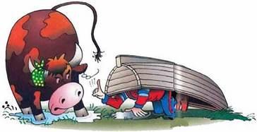 спрятался от разъяренного быка под лодкой