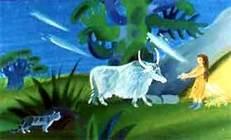 женщина равно дикая корова