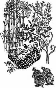 Читать краткое содержание о чем говорят цветы жорж санд читать