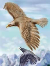 Орел рассказ Пришвина