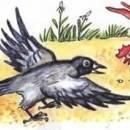 Ворона и Курица