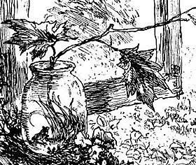 паустовский квакша картинки
