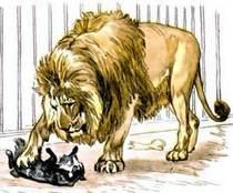 лев и собачка картинки
