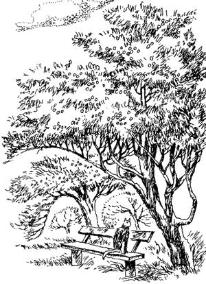 Пришвин Наш сад (Рассказы старого садовника)