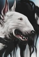 beshenyj pes