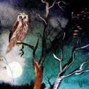 Ленивый филин - бурятская сказка