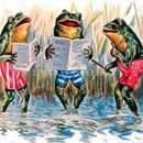 Лягушки поют