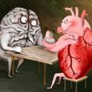 Органы человеческого тела