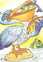 pelikane vospitanie