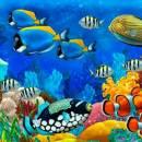 Почему рыбы молчат