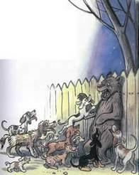 Дядя Миша медведь и собаки у забора
