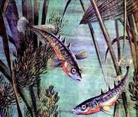Скачать Игру Рыбий Дом Бесплатно - фото 11