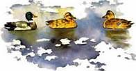 Синичкин календарь читать Бианки