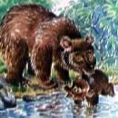 купание медвежат читать сказка рассказ Бианки