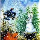 Заяц, косач, медведь и дед мороз читать рассказ Бианки