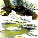 Заяц, косач, медведь и весна читать рассказ Бианки