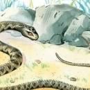 Крестьянин и змея