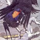 Ласточка и ворона