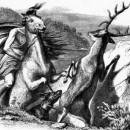 Мстительный конь и олень