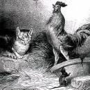 Петух, кот и мышонок