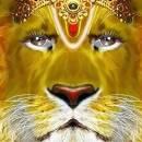 Трус, отыскавший золотого льва