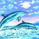 Тунец и дельфин