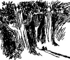 Маленькие тролли или большое наводнение читать рассказ сказку Туве Янсон