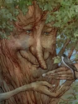 Дерево басня